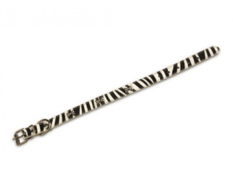 Coleira Pele Zebra