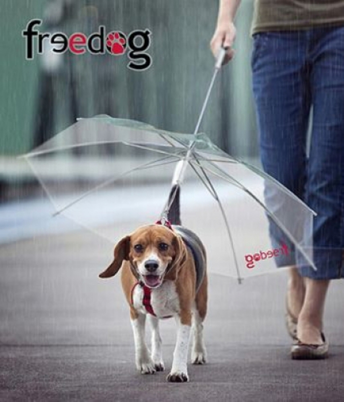 Guarda Chuva Freedog